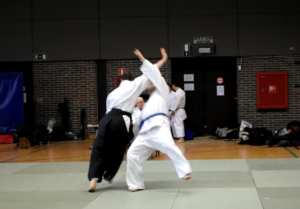 Aikido2015