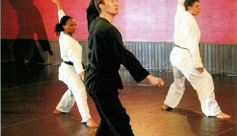R.Dejardin-Nidan-Karatedo